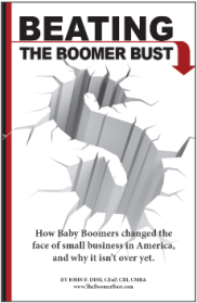 Boomer Bust Cover
